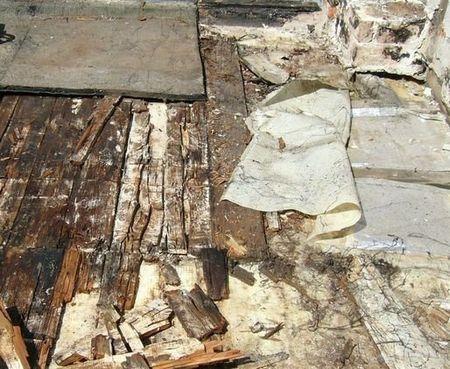 Holzschäden aufgrund einer undichten Dachabdichtung und Tauwasserausfall