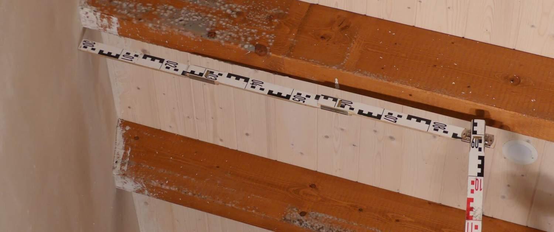 Schimmelbefall am Dachstuhl